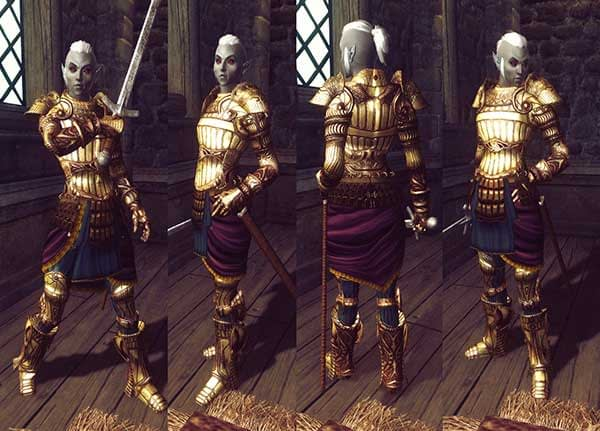 Assorted-Protective-Female-Armors